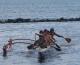 Hawaiian Cultural Canoe Tour